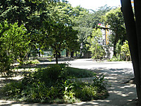 P7170012