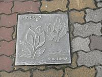 P5250018